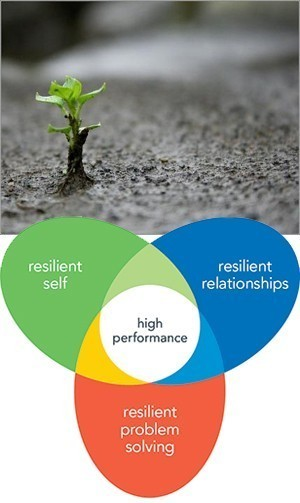 Resilience - thriving despite difficulties; Resilient Self - Resilienct Relationships - Resilient Problem Solving